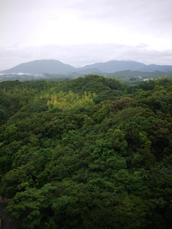 Wakayama 2015 ~ 034