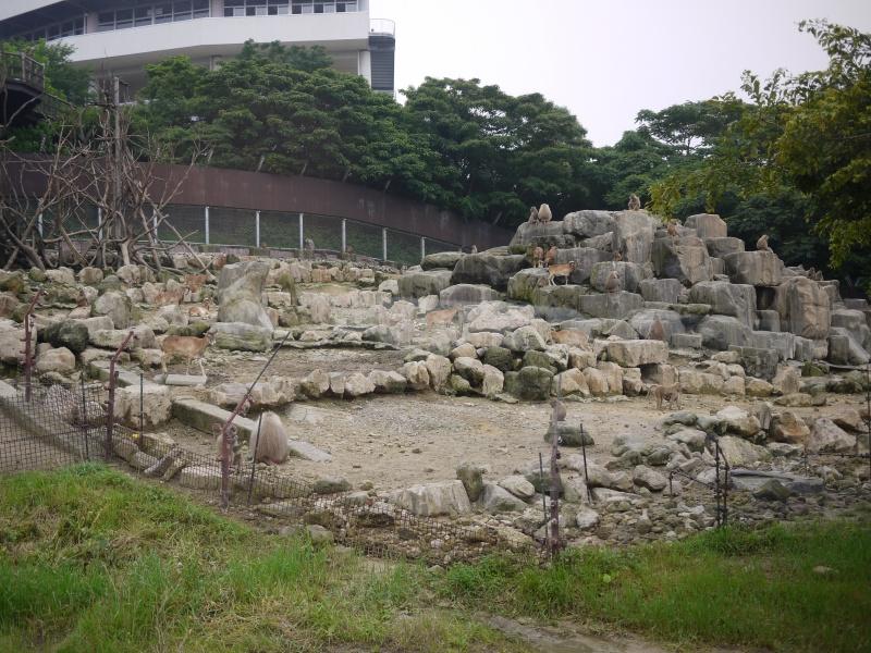 Wakayama 2015 ~ 075
