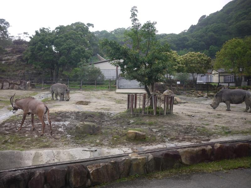 Wakayama 2015 ~ 081