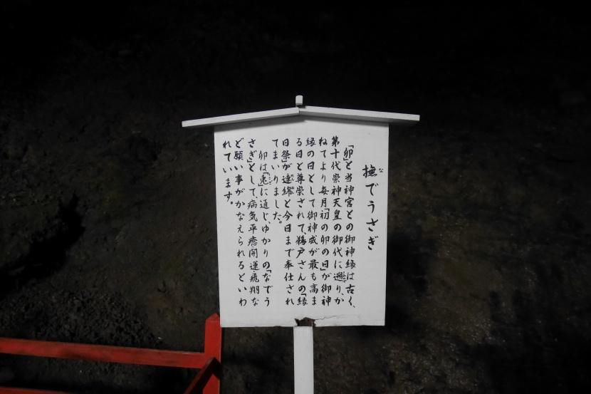 MIYAZAKI 045
