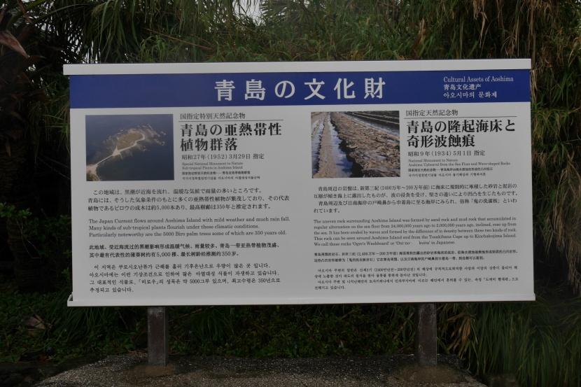 MIYAZAKI 0133