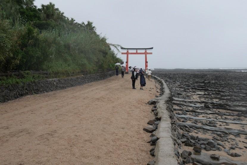 MIYAZAKI 0135
