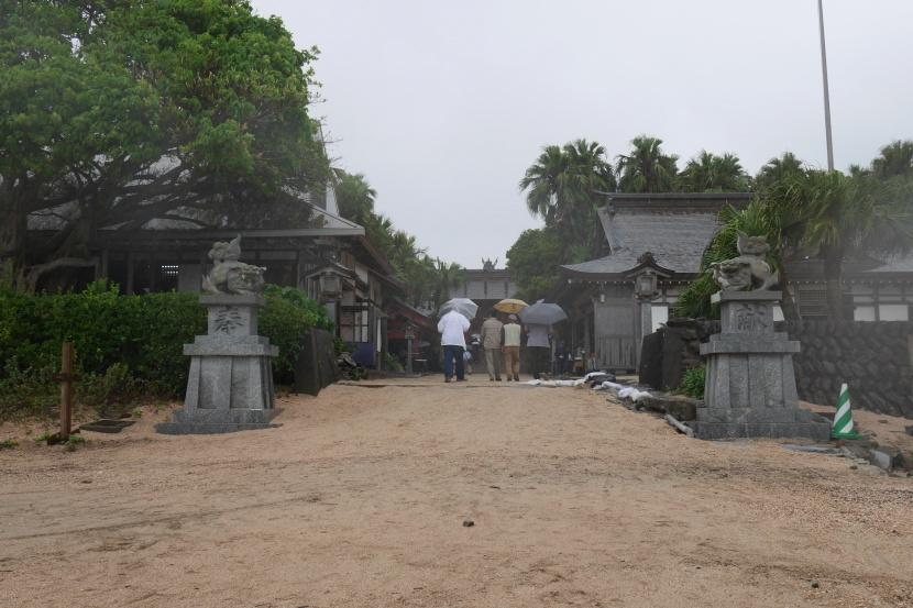 MIYAZAKI 0141